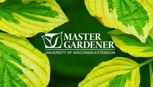mgv leaf logo