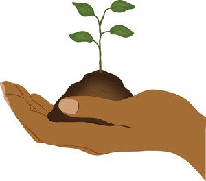 clip_art_image_of_an_ethnic_hand_holding_a_seddling_in_soil_0515-1003-2901-5432_smu